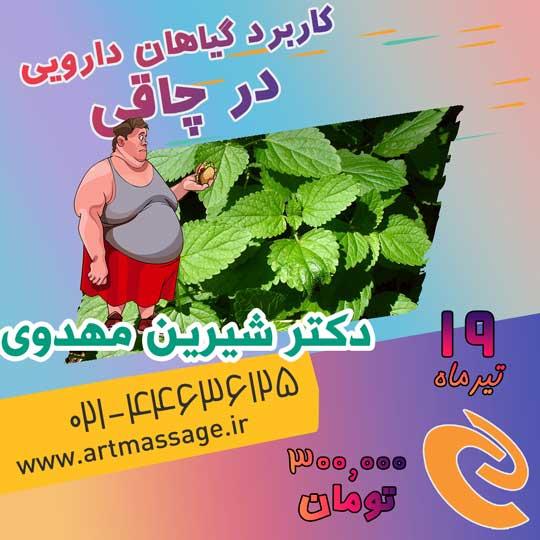 دوره آموزشی کاربرد گیاهان دارویی در چاقی